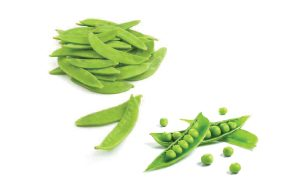 SnowPeas-SugarSnaps